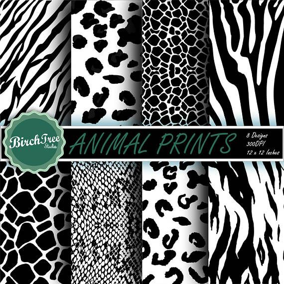 Animal Skin Clipart.