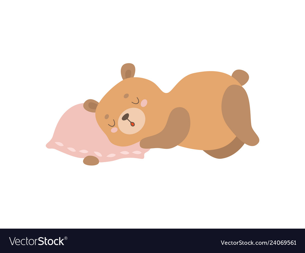 Cute baby bear animal sleeping on pillow.