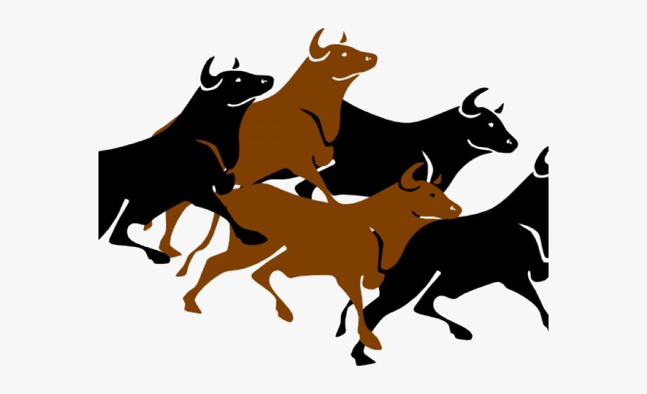 Bulls Clipart Stampede.