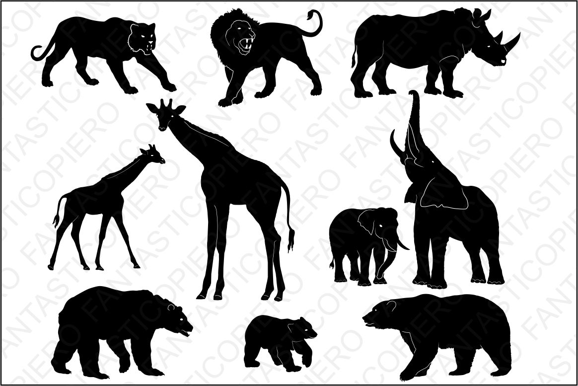 Wild Animals SVG files for Silhouette Cameo and Cricut. Wild Animals  clipart PNG transparent included..