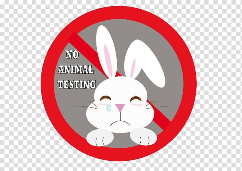 Rabbit Animal testing Experimentación, rabbit transparent.