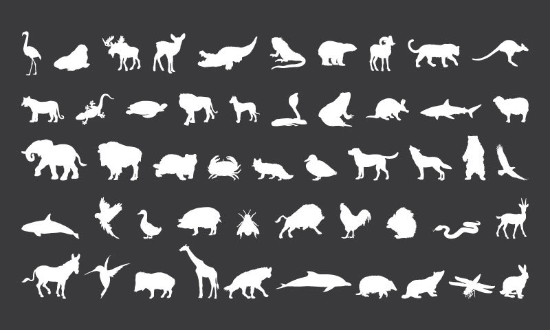 50 Wild Animal Silhouette Clipart, Animal Clip Art, Animal Clipart.