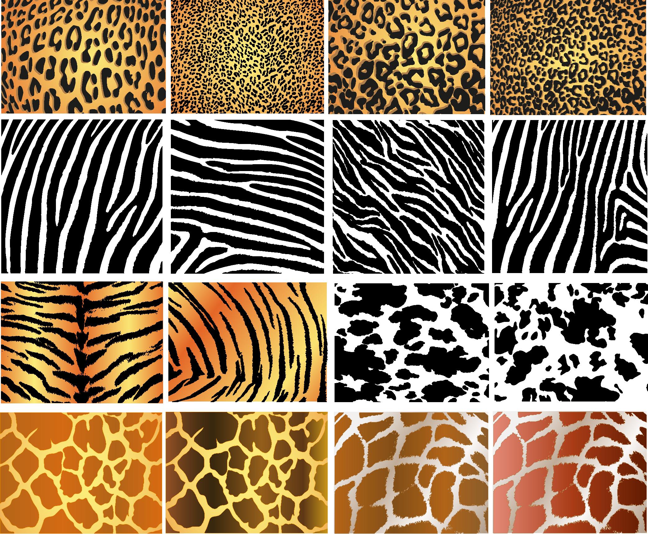Animal Skin Textures.