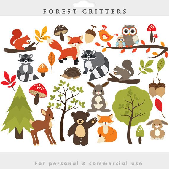 cute forest animal clipart owl deer bunny fox.