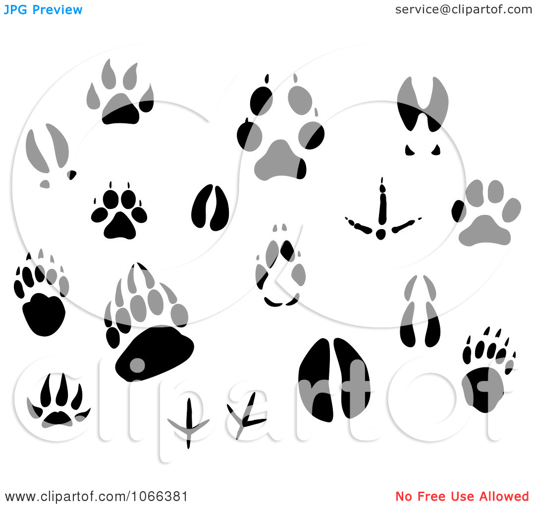 Animal track heart clipart.