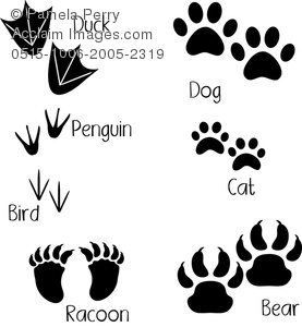 Clip Art Image of a Collection of Animal Tracks.