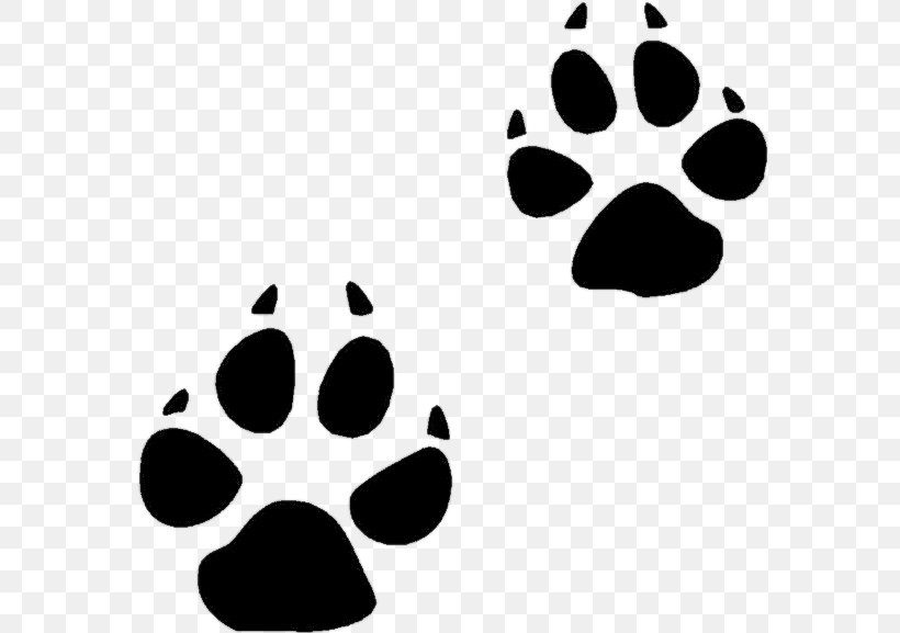 Bear Animal Track Squirrel Footprint Clip Art, PNG.