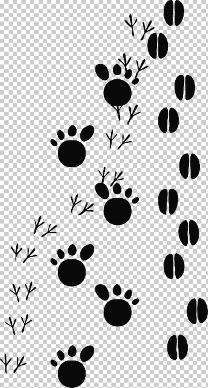 Animal track Footprint , cat footprints PNG clipart.
