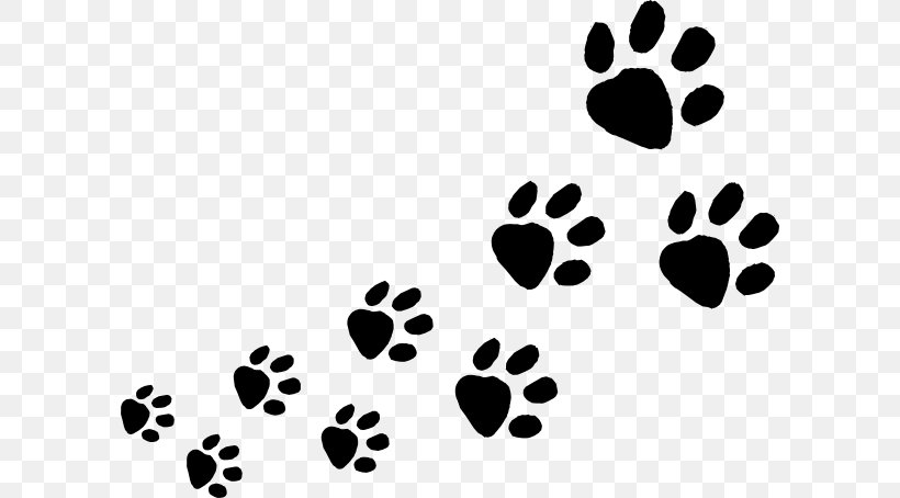 Dog Cat Animal Track Paw Clip Art, PNG, 600x454px, Dog.