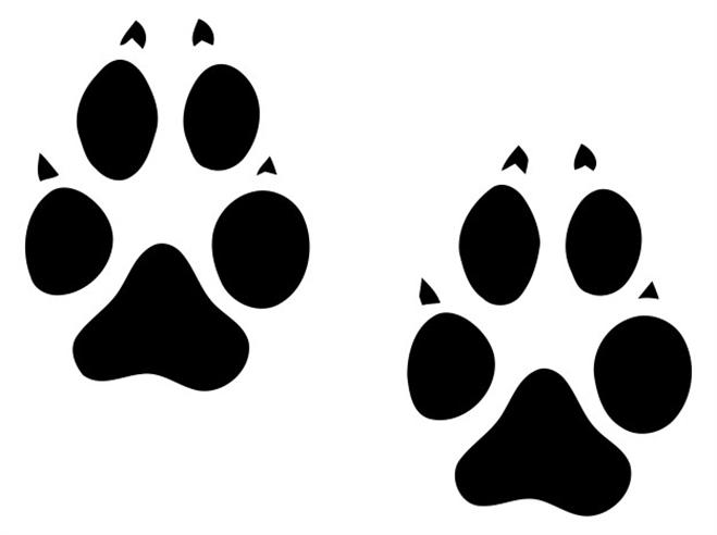 Animal Tracks Clipart.
