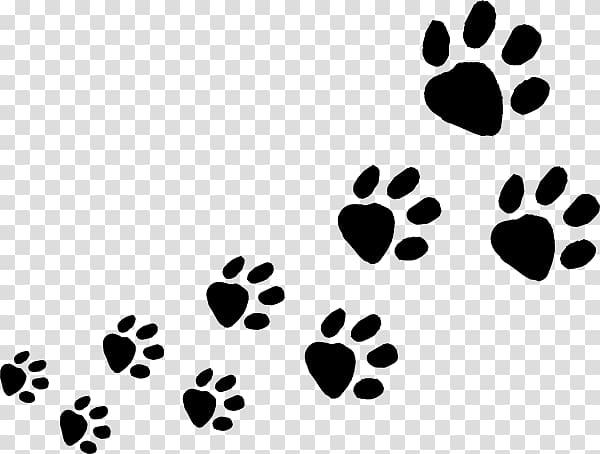 Dog Cat Animal track Paw , Animal Footprints transparent.