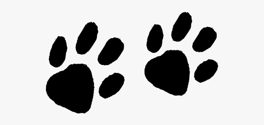 Raccoon Tracks Png Image Clip Art.