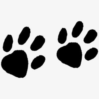 Animal Track Footprint Tracking Muskrat Raccoon Transprent.