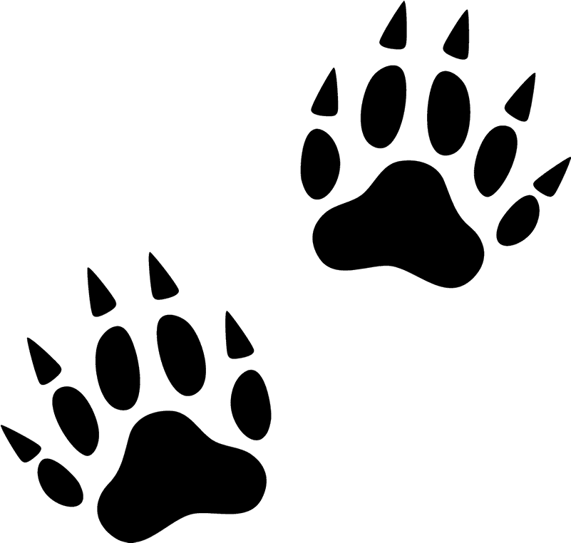 Svg Free Library Animal Footprints Clipart.