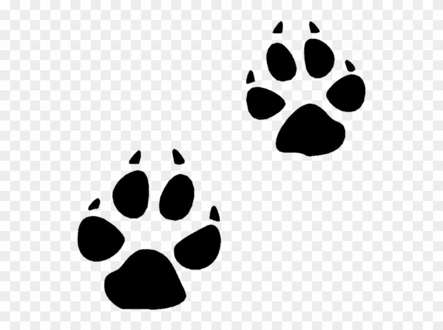 Animal tracks clipart transparent curved clipart images.