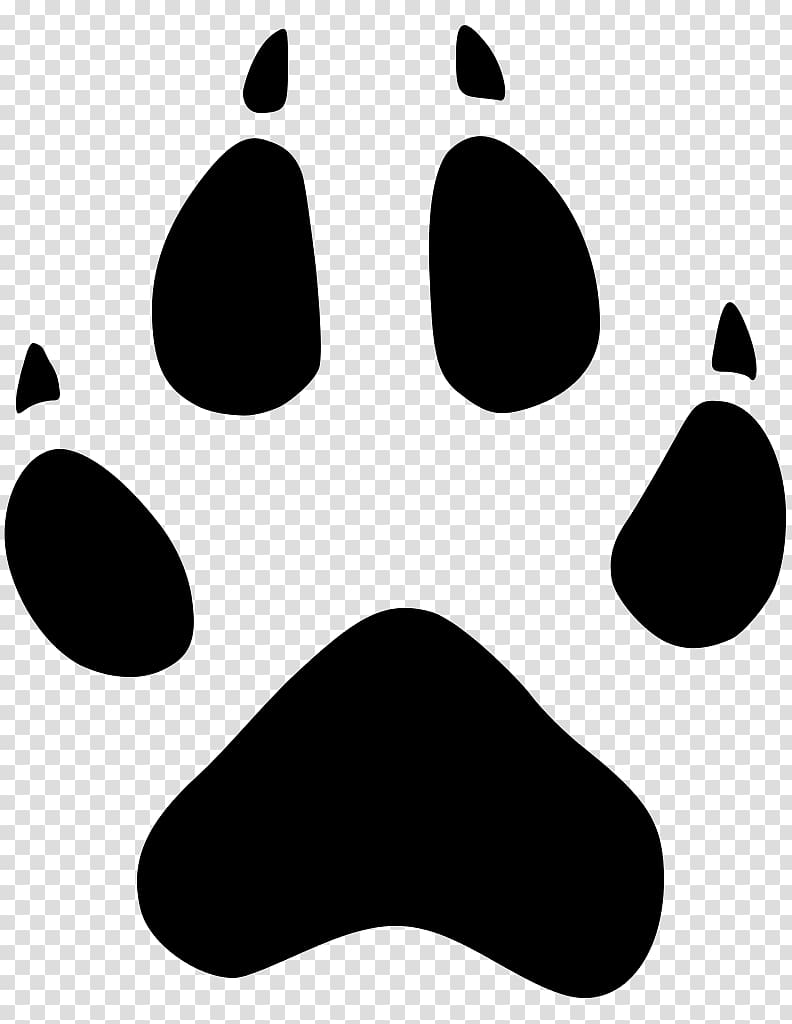 Dog Coyote Animal track Cougar , tracks transparent.