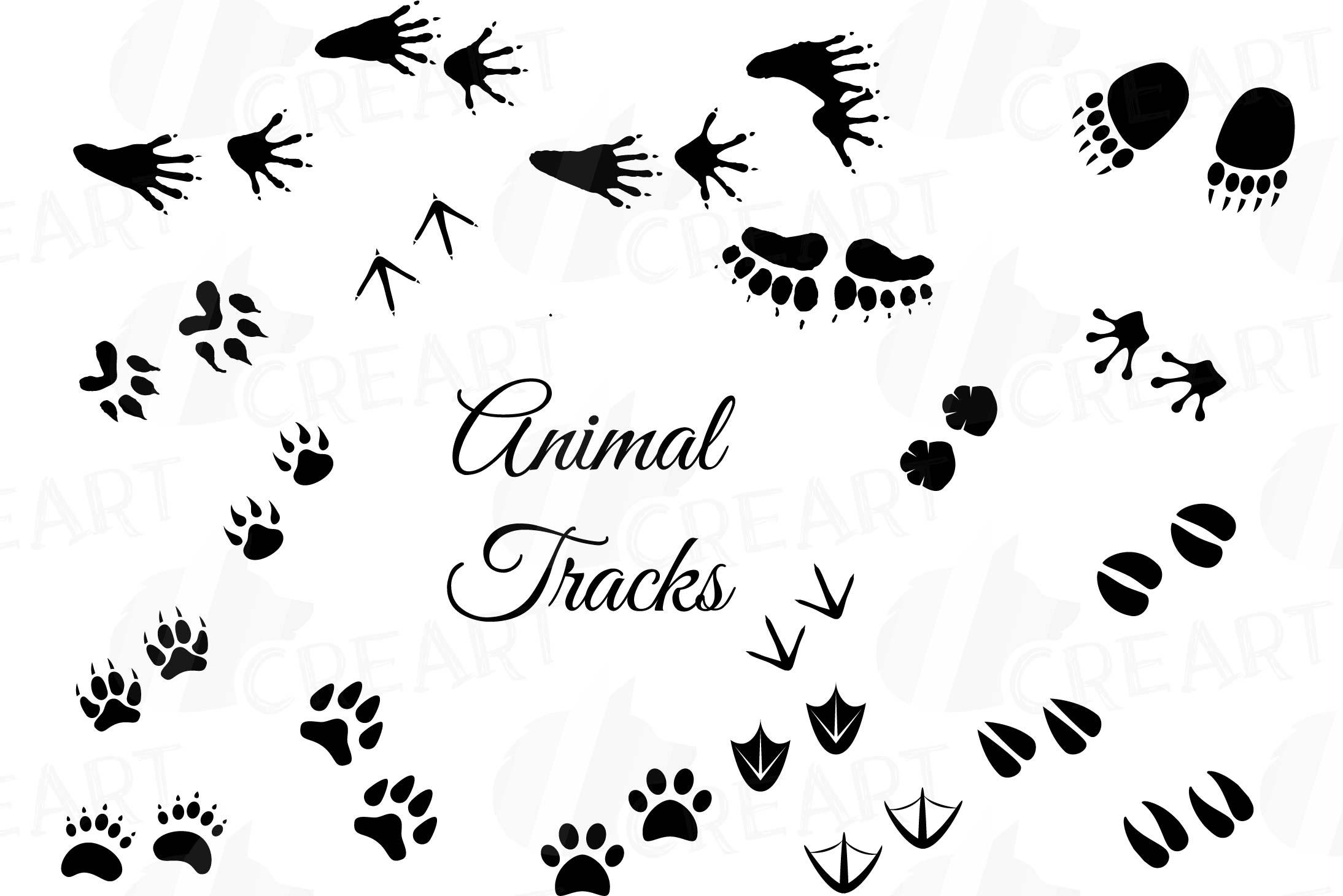 Animal Tracks Cliparts 9.