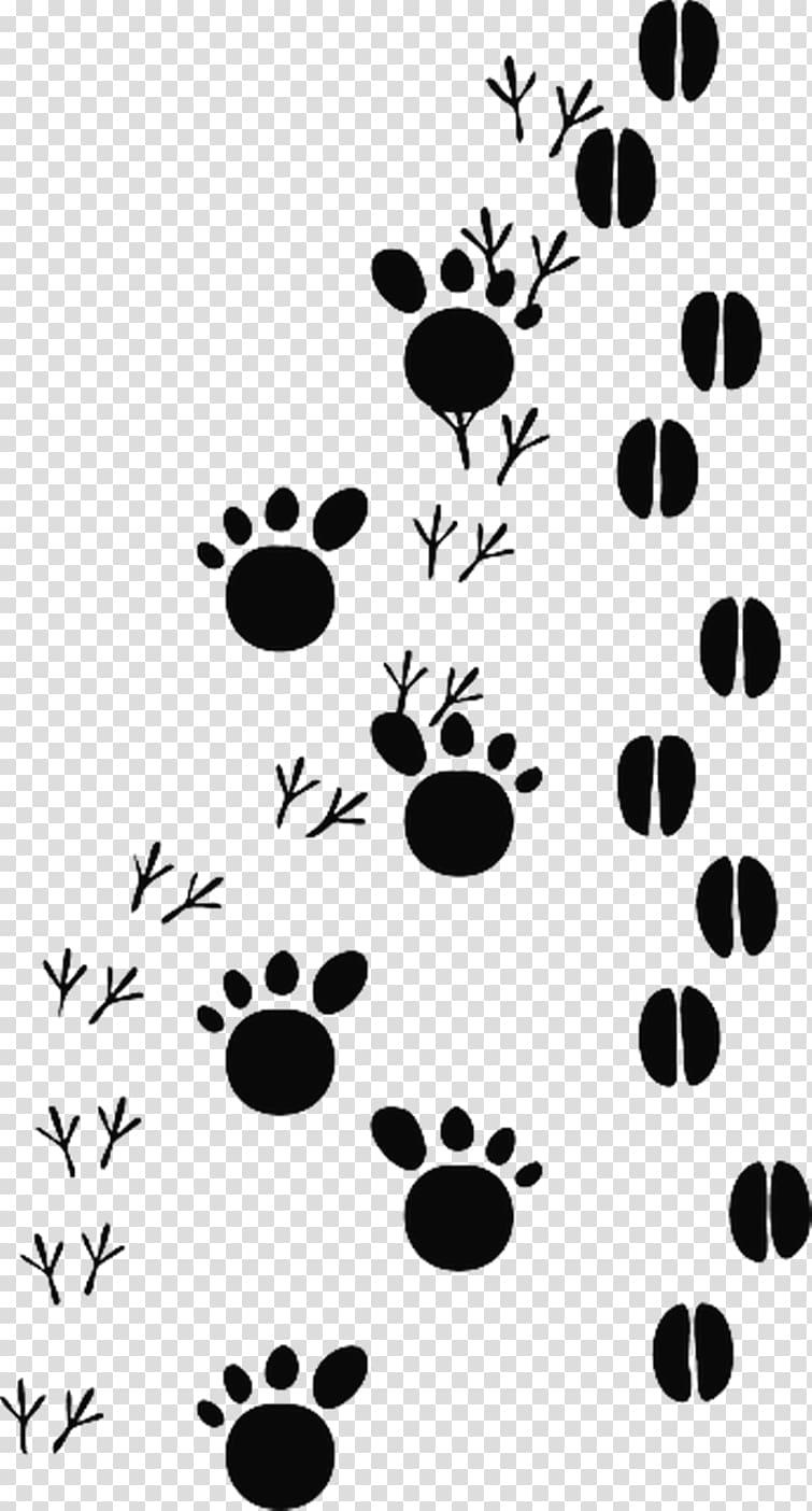 Animal track Footprint , cat footprints transparent.