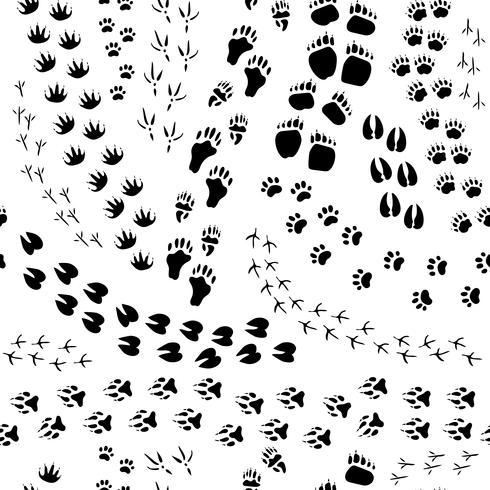 Animal Track Seamless Pattern.