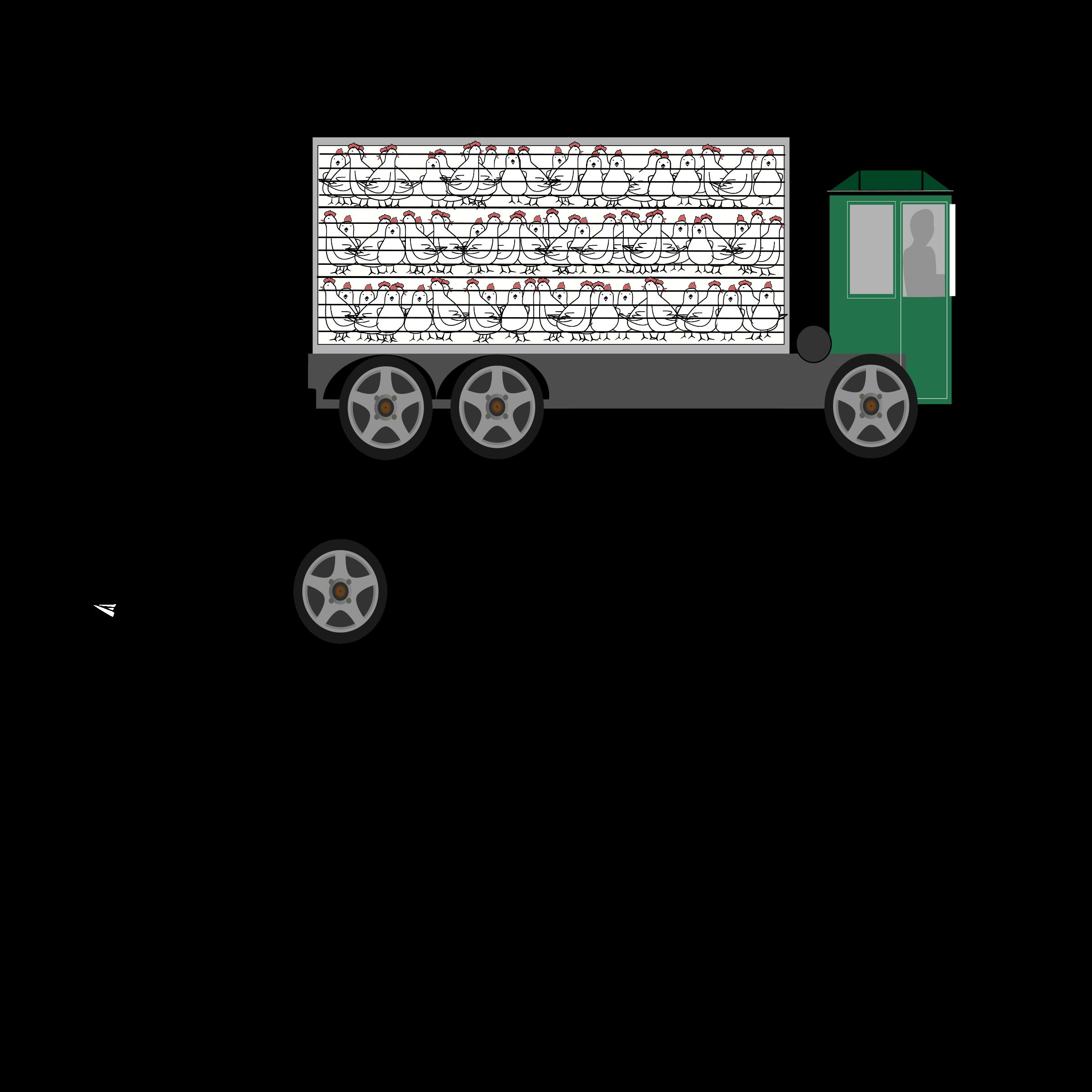 Transportation clipart animal, Transportation animal.