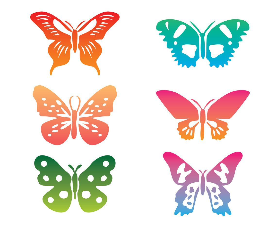 Collection set of variation colorful butterfly clip art.