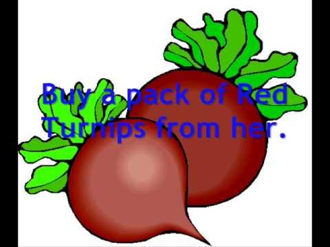 Animal Crossing Wild World Cheats: The Red Turnip.