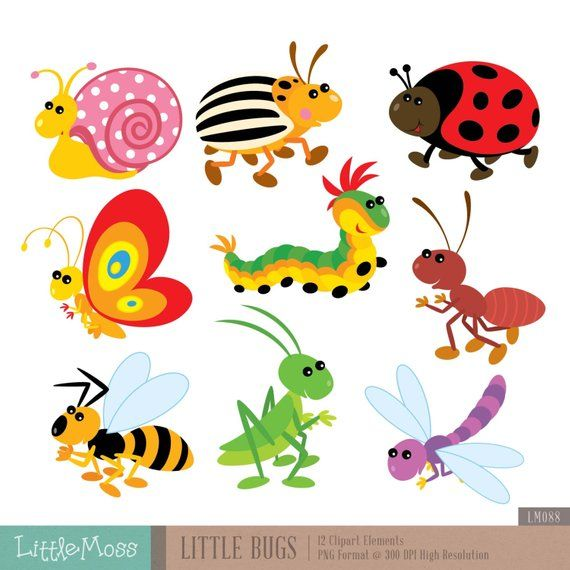Little Bugs Digital Clipart.