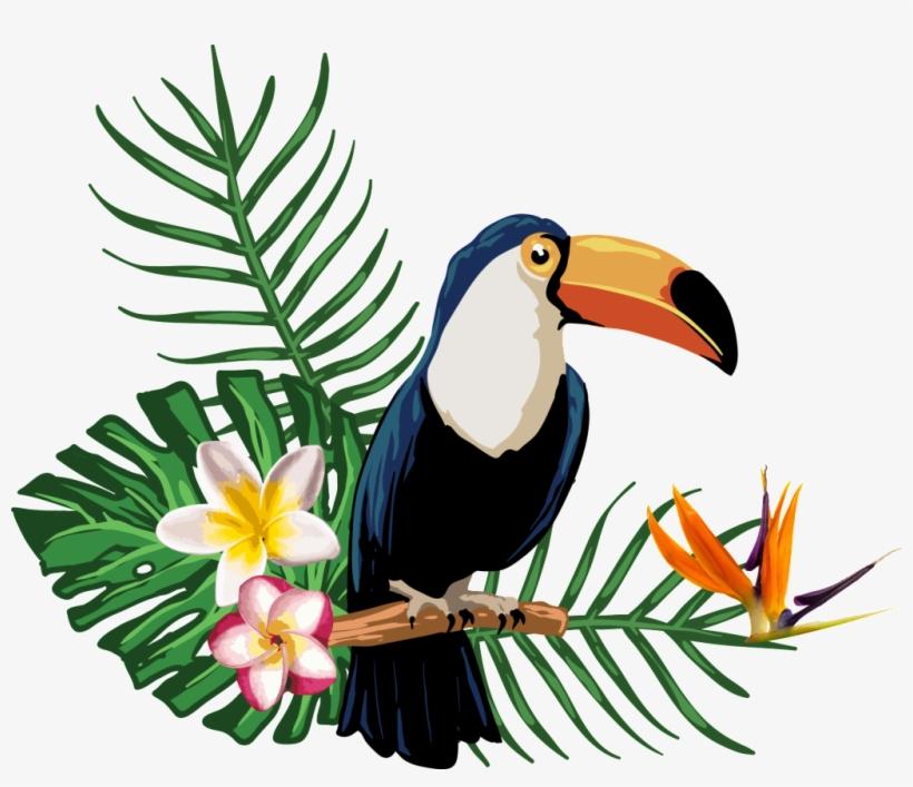 Transparent For Tropical Plant Animals.