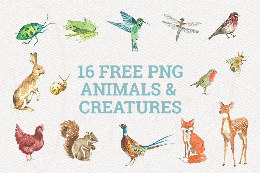 Animals and Creatures Watercolor Graphics Collection.