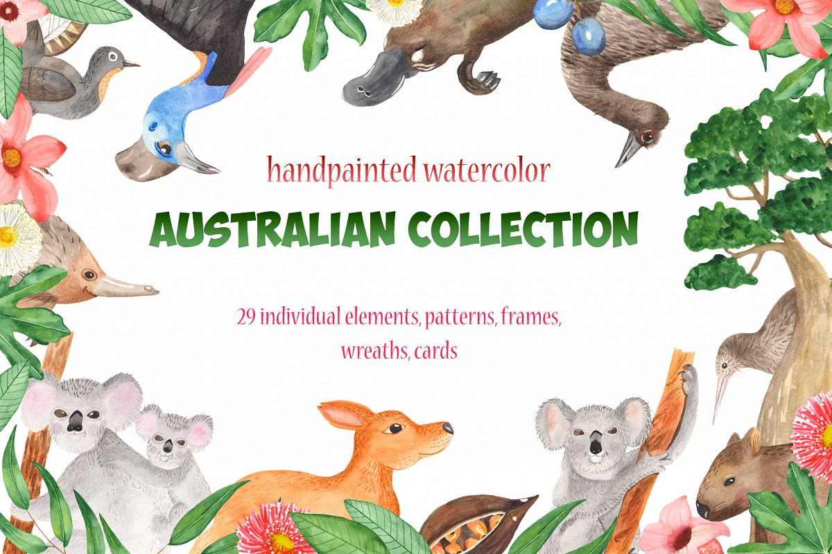 Australian animals and plants watercolor clipart.