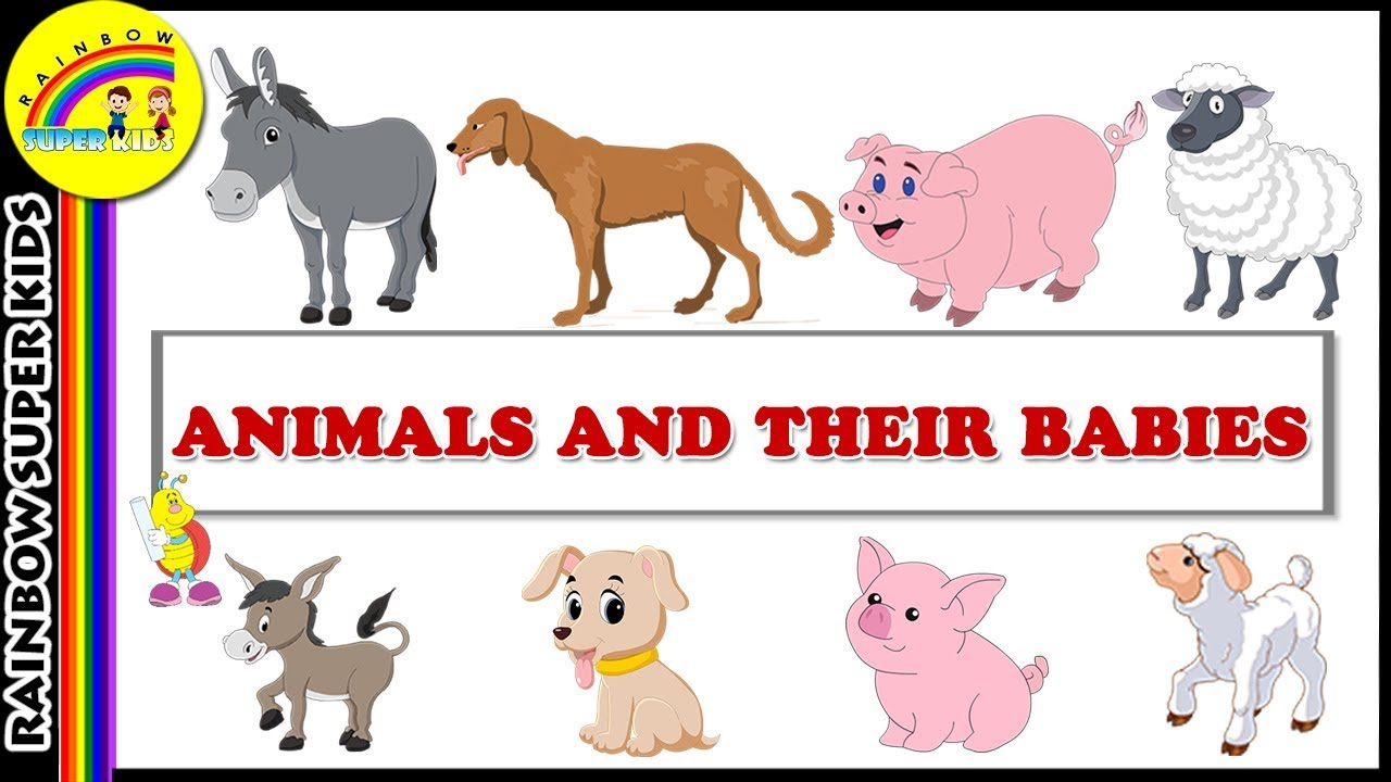 Cartoon Images Of Animals And Their Babies.