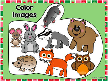 Woodland Animals and Friends Clipart.