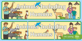Animals Including Humans Display Lettering.