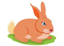 Free Rabbit Clipart.