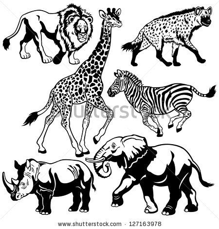 free wildlife black and white drawings.