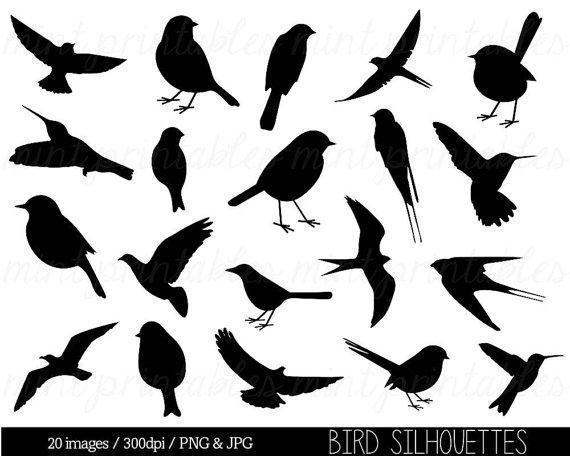 Bird Clipart Clip art, Bird Silhouette Clipart, Cute bird.