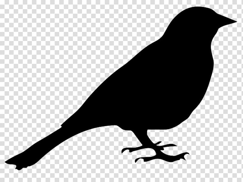 Bird Silhouette , Bird transparent background PNG clipart.
