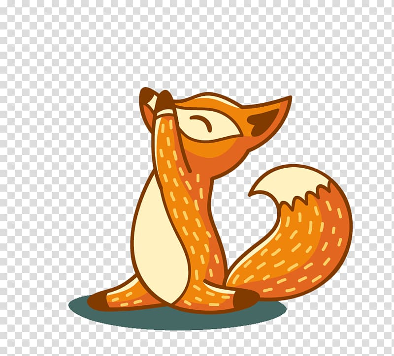 Red fox , Yoga , Fox doing yoga transparent background PNG.