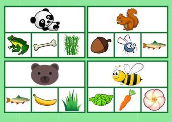 What Animal Eat Worksheets & Teaching Resources.