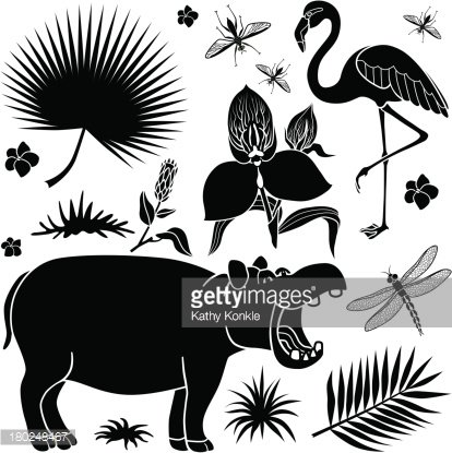 African plants and animals Clipart Image.