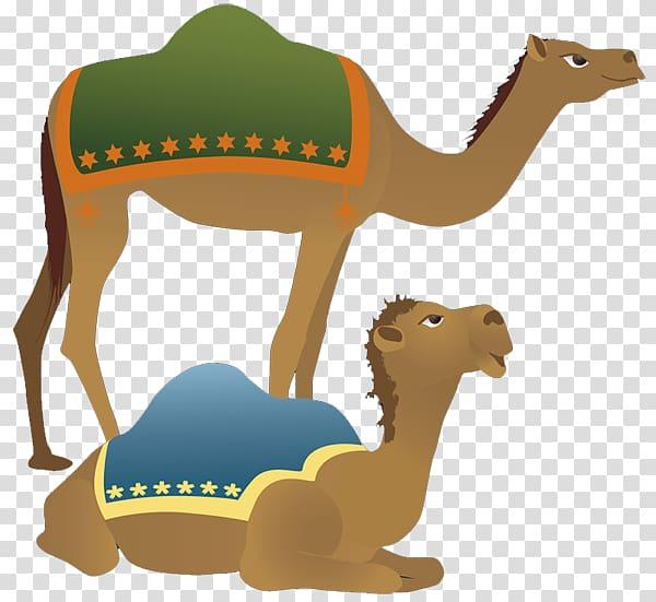 Camel Holy Family Nativity scene Christmas , Camel.