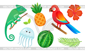 Exotic Animals, Fruits and Plants, Summer Vacation.