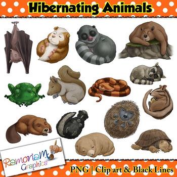 Hibernating Animals Clipart Worksheets & Teaching Resources.