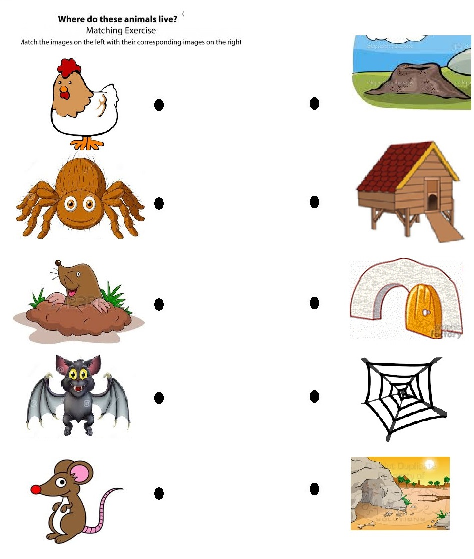 Clipart Animal Homes.