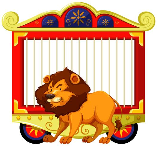 Lion and carnival cage.