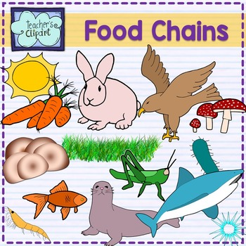 Food Chain Animals clipart.