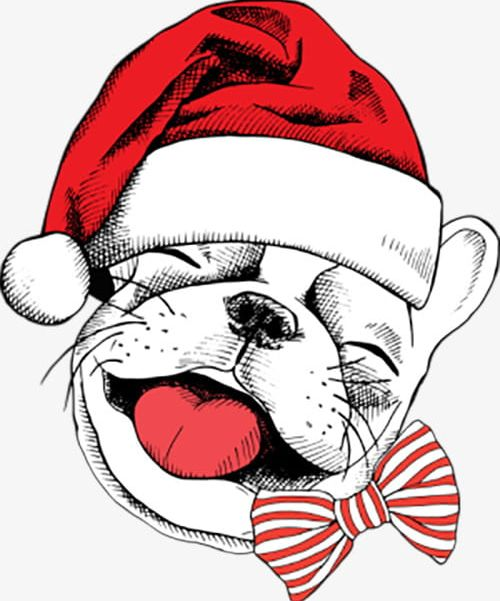 Hey Leather Dog Christmas Hats PNG, Clipart, Animals.