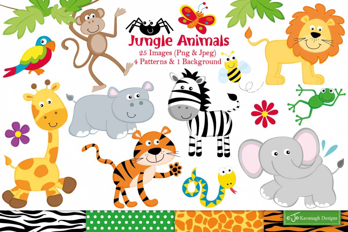 Jungle clipart, Jungle animals graphics & illustrations.