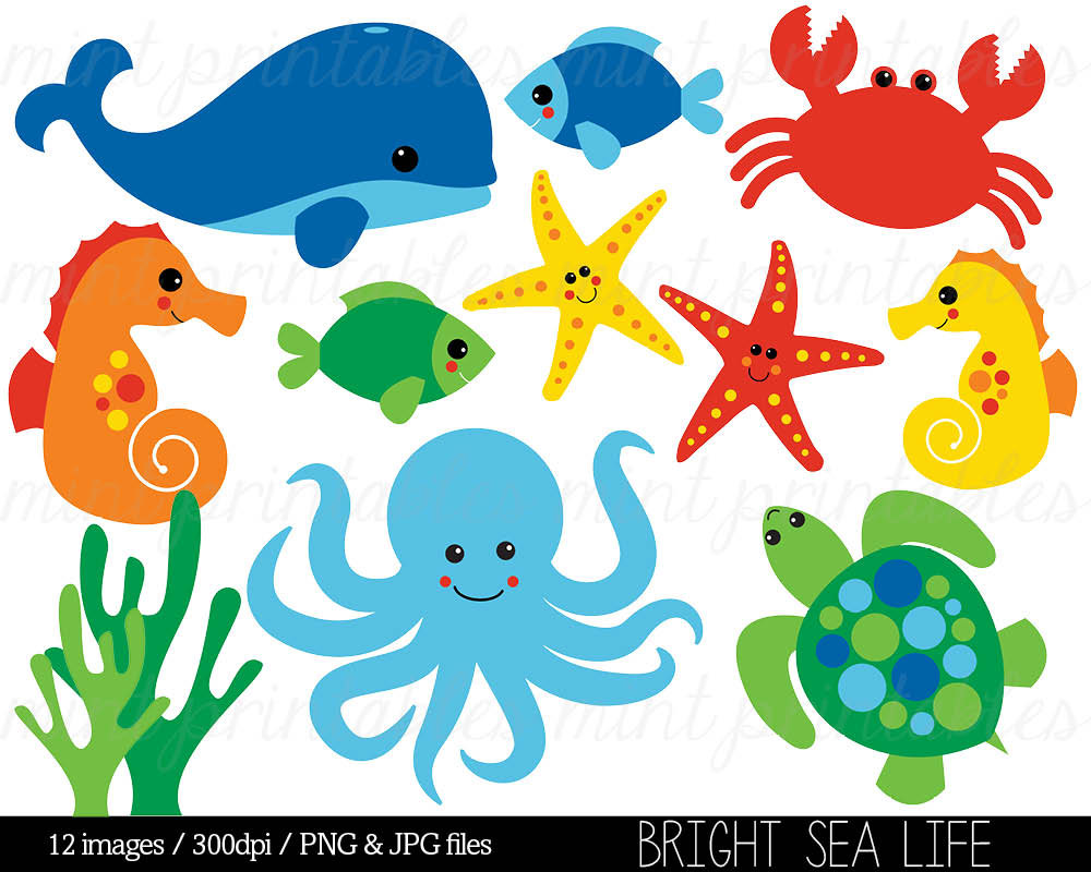 Animals In The Ocean Clipart.