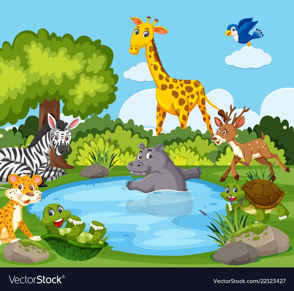 Wild animals around a pond.
